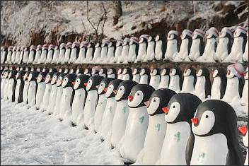 Google Penguins